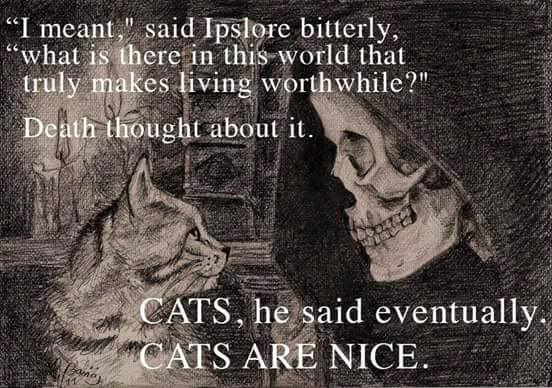 pratchet death cat quote