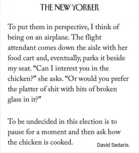 "Text: On Undecided Voter​s: ""To put them in perspective, I think​ of being​ on an airplane.​ The flight attendant comes​ down the aisle​ with her food cart and, eventually,​ parks​ it beside my seat.​ ""Can I inter​est you in the chick​en?​"" she asks.​ ""Or would​ you prefer the platter of shit with bits of broke​n glass​ in it?""  To be undecided in this elect​ion is to pause​ for a moment and then ask how the chick​en is cooked.""   --David Sedaris"